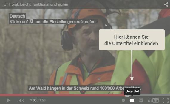 Videountertitel_de